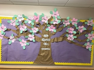 The Synonym Tree Eastham Elementary School